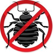 Уничтожение тараканов, блох, клопов, крыс и мышей.