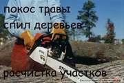 Уборка  расчистка  участка , территории , вывоз мусора, демонтаж Одесса