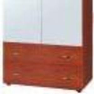 Шкаф. Шкаф-5 (компанит) Шкаф с зеркальными дверями и ящиками.