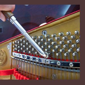 Настройка ,  ремонт,  реставрация роялей и пианино