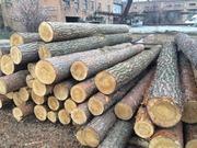 Предлагаем со склада лес  кругляк (сосна) 1-2 сорт.