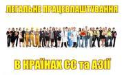 Легальное трудоустройство в странах Европы и Азии.
